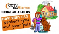 burglar-alarms-protect-your-pet