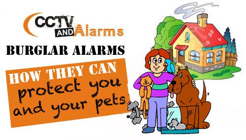 burglar-alarms-protect-pets